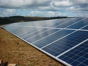 solar panels in field